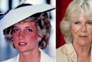 Dupa ce a aflat că este amanta soțului ei, Lady Di s-a întâlnit cu Camilla la o petrecere. Replica ei a rămas în istorie